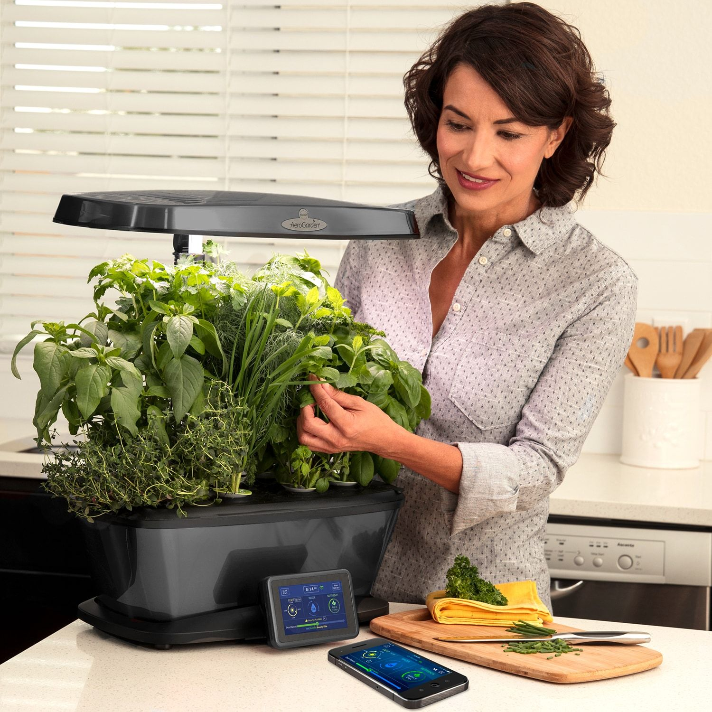Aerogarden Bounty Elite Wi Fi With Gourmet Herb Seed Pod 400 x 300