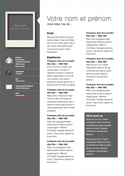 Resume Templates Pages Iworks Templates Resume Free  Httpwwwresumecareeriworks