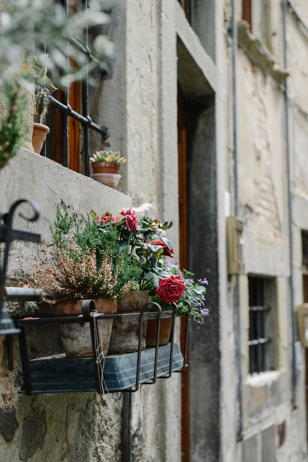 Kitchen window from outside  pin by  milo dee  on  la naturelle   pinterest  best lemon