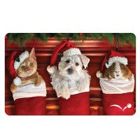 PetSmart® Pets in Stocking Holiday Gift Card  - PetSmart