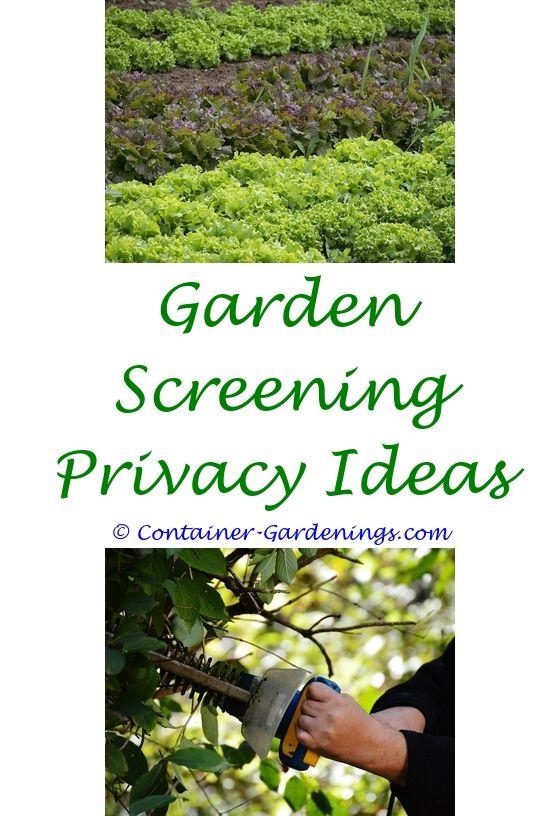 Front Garden Design Ideas | Container water gardens, Garden ideas ...