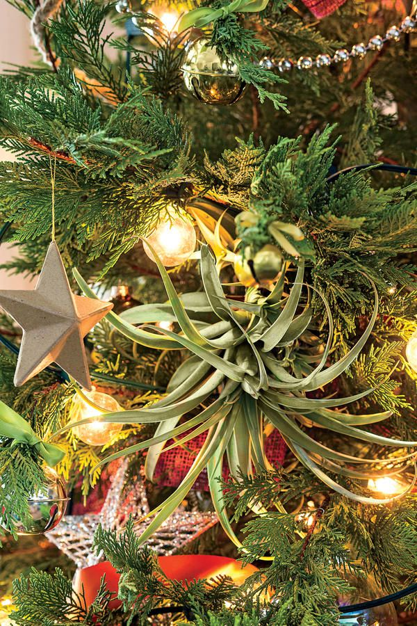 Home At Last Christmas tree images - southern living christmas decorations