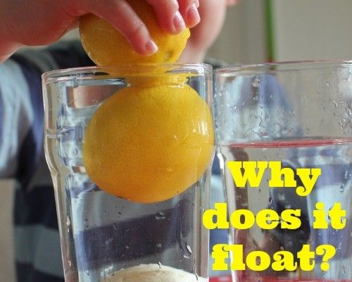 Sink Or Float Experiment With Lemons Educational Stuff