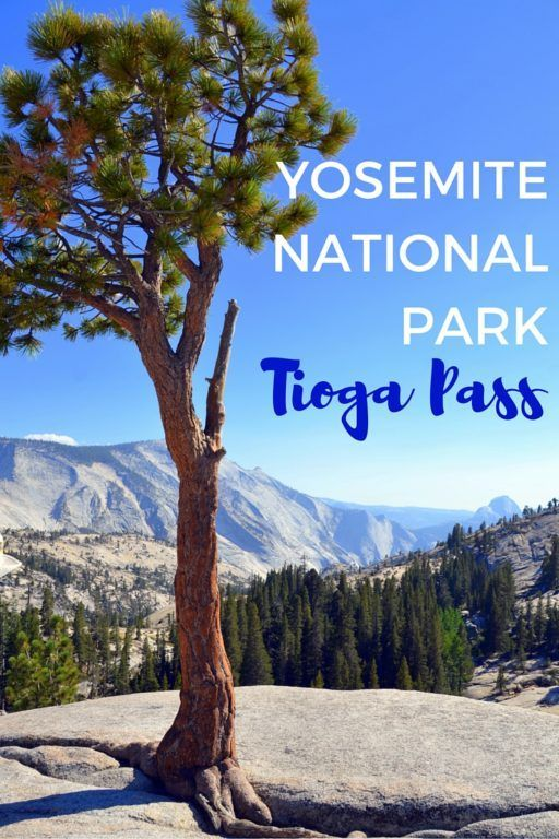 Yosemite National Park Tioga Pass The Road Less Traveled National Nationalparks Park Pass Road Tioga Traveled Yosemite Parks Urlaub The Road
