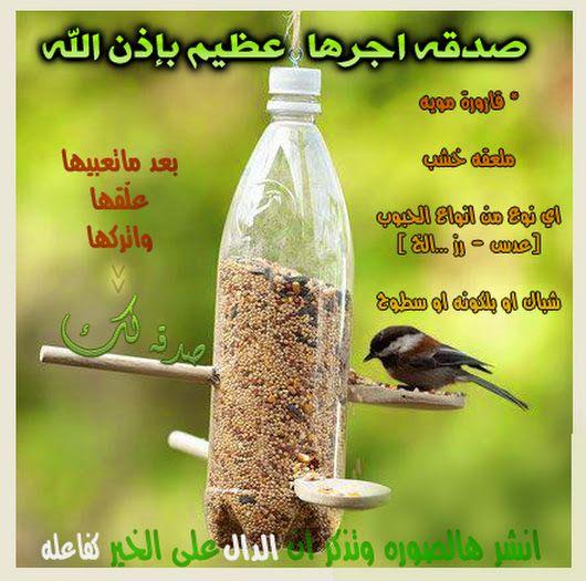 Sign In Bird Feeders Diy Kids Diy Bird Feeder Bird Feeders