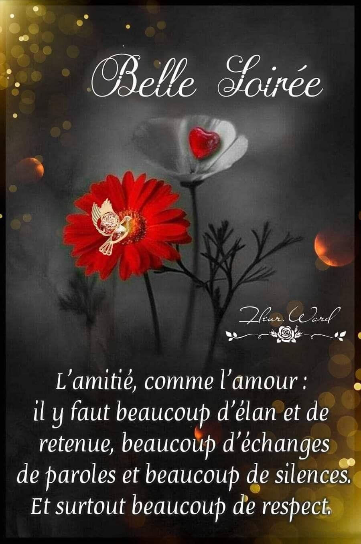Epingle Par Mp Sermier Sur La Sagesse Image Bonne Nuit Drole Citation Bonne Nuit Image Bonne Nuit