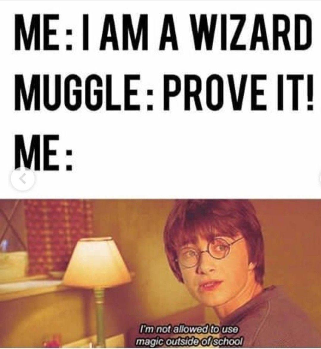 Harry Potter Muggle Memes Harry Potter Harry Potter Feels Harry Potter Images Harry Potter Memes