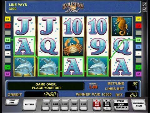 Слот-автоматы дельфины мошенники, которые занимают деньги для игры в казино