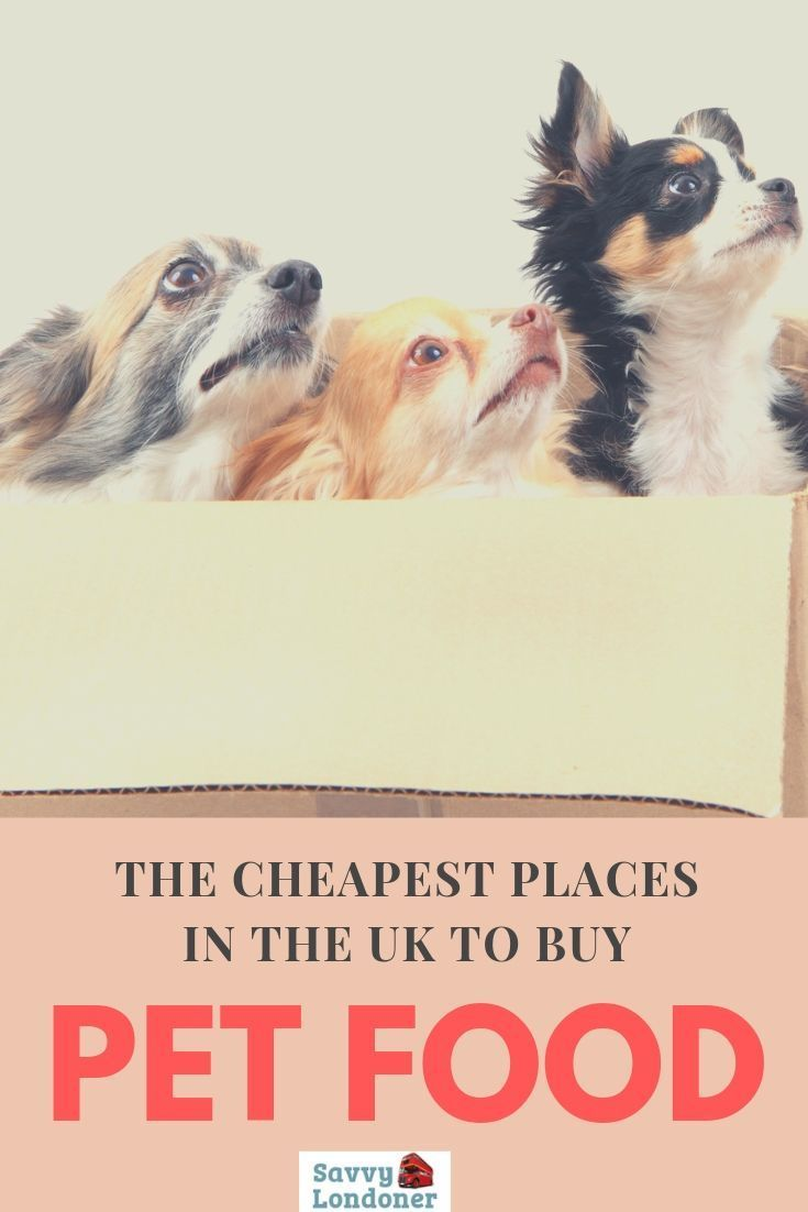 Where To Buy Cheap Pet Food And Supplies In The UK Food