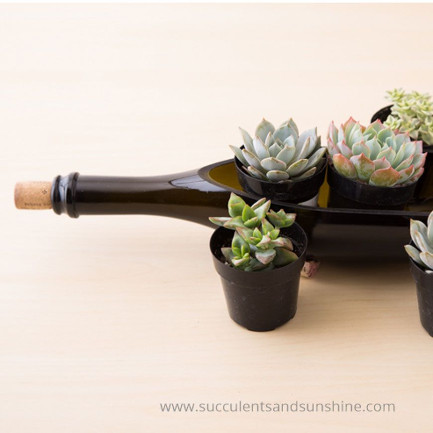 16 Creative New Ways to Use Old Bottles Things I like Wine bottle planter Wine bottle