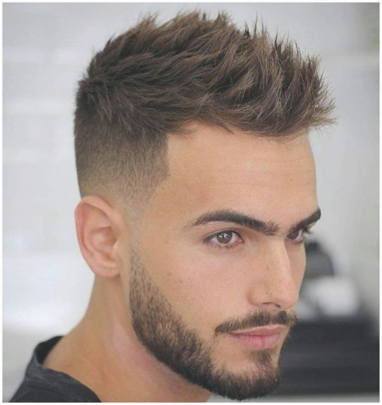 Pin On Mens Haircuts