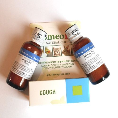 Home Remedies For Collapsed Trachea In Dogs