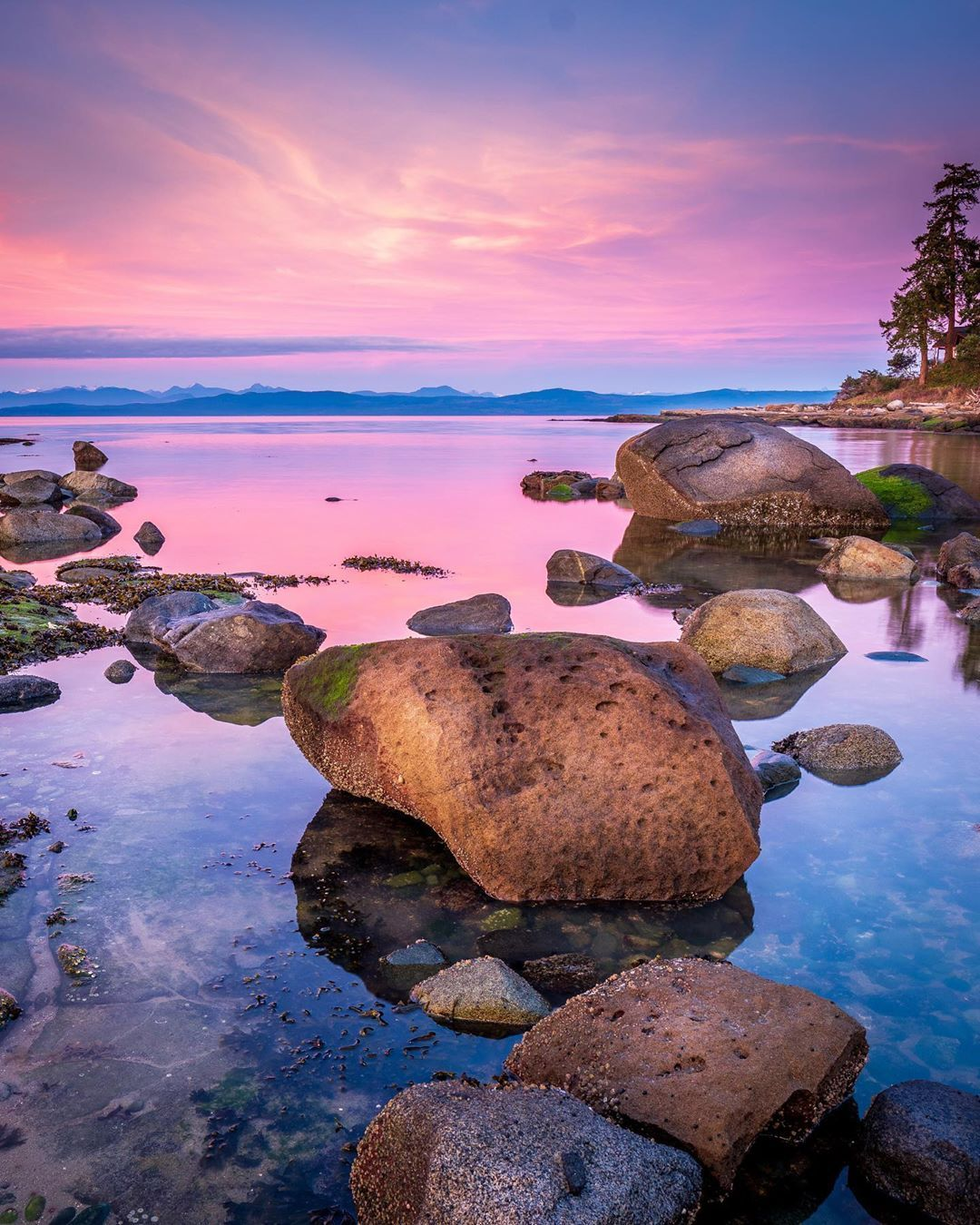 Cory Schadt On Instagram Nature Landscape Sunset Photography Pink Blue With Rocks In Water Hornby Sunset Photography Nature Photography Scenic Photos