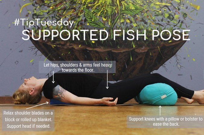 Our TipTuesday this week is Supported Fish Pose or