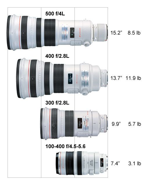 Canon Ef Lenses What An Arsenal Of Lenses If One Only Had The Money Wish To Own Camera Photography Photography Equipment Camera Collection