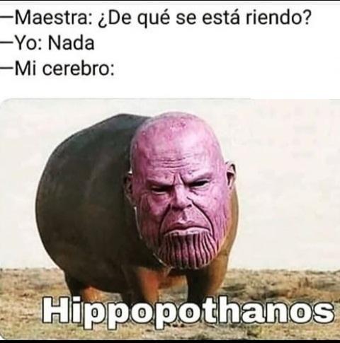 Memesespanol Chistes Humor Memes Risas Videos Argentina Memesespana Colombia Rock Memes Love Viral Bo Memes Funny Marvel Memes Really Funny Memes
