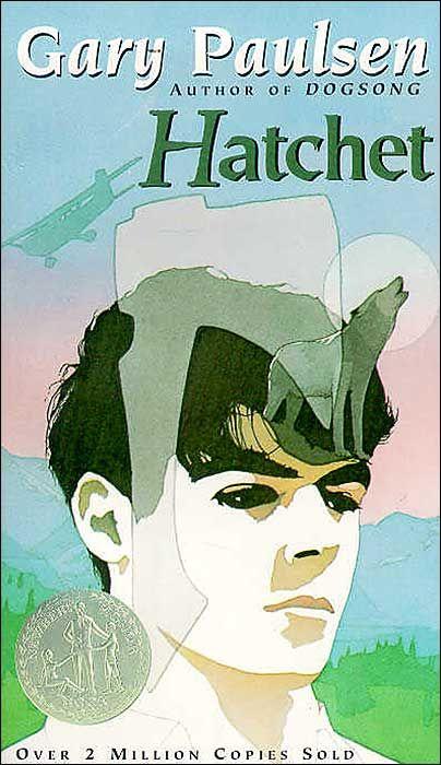 10 Wilderness Survival Lessons From Hatchet Books For Boys Hatchet Book Hatchet Novel