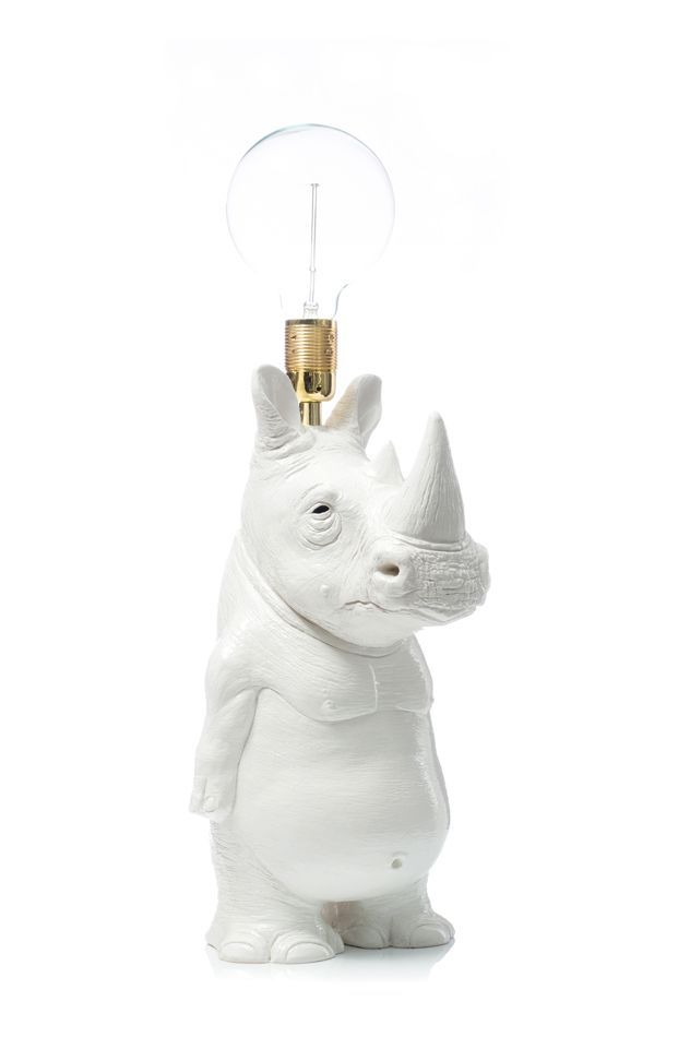 Photo of hippo light