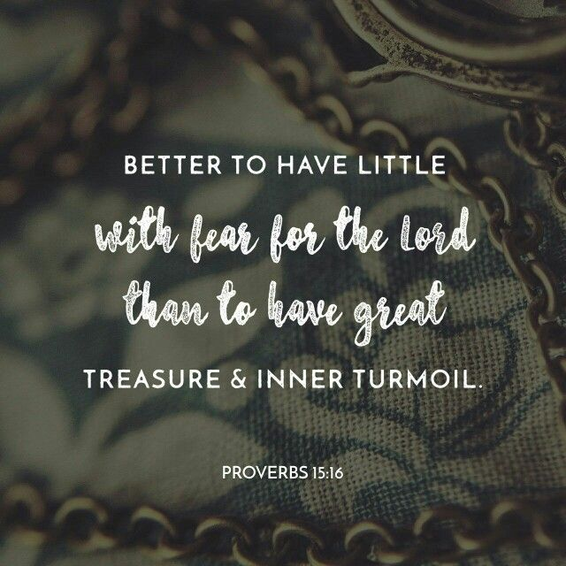 Better a little with the fear of the Lord  than great wealth with turmoil.  Proverbs 15:16 #wealthy #fear #truthbomb