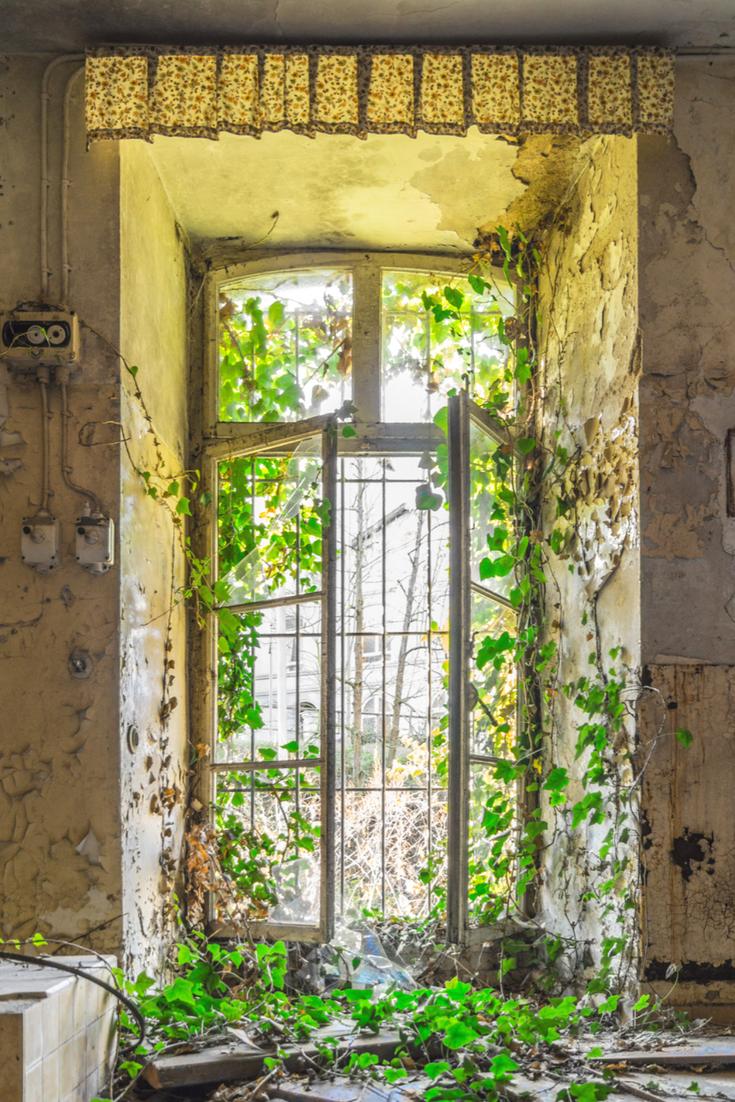 Lost Place: Verlassenes Kloster in Rheinland-Pfalz am Rhein   Lost ...