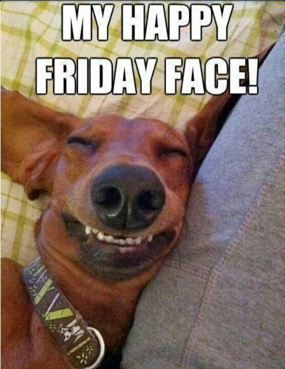 Funny Friday Memes Humor Hilarious - Funny Friday Memes