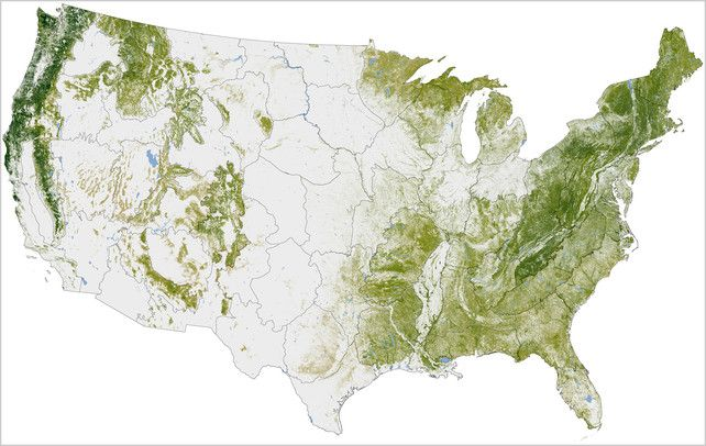 Nasa creates insanely high res map of americas trees and offers a nasa creates insanely high res map of americas trees and offers a lesson in information design publicscrutiny Image collections