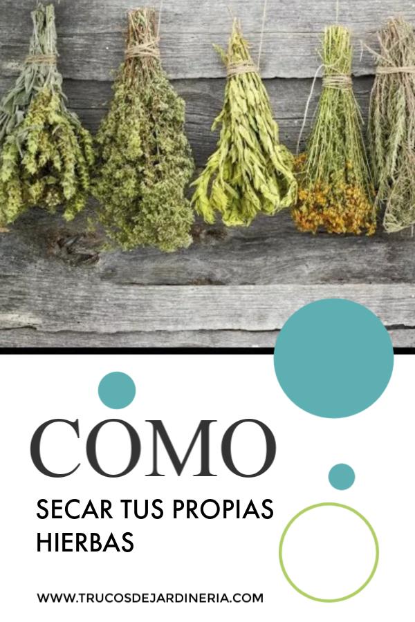 Como Secar Hierbas Una Guía Para Secar Hierbas Frescas Secado De Hierbas Hierbas Jardineria Y Plantas