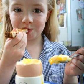 High Protein foods for kids and picky eaters