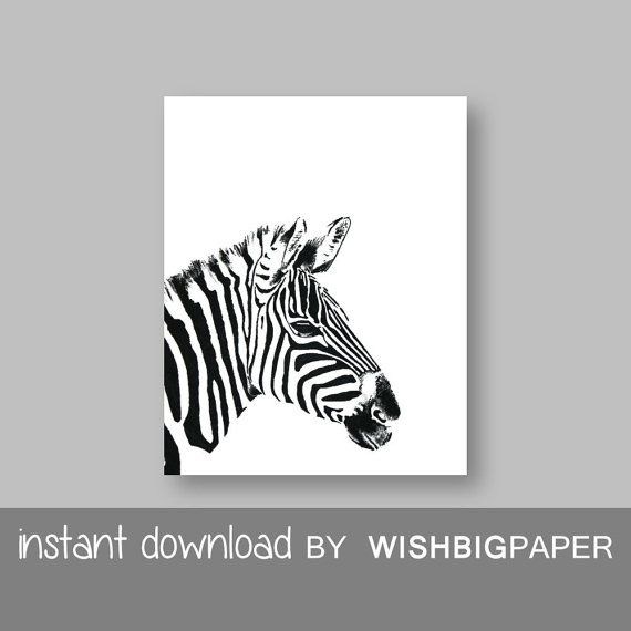 Sale zebra wall art print instant download black white zebra wall art
