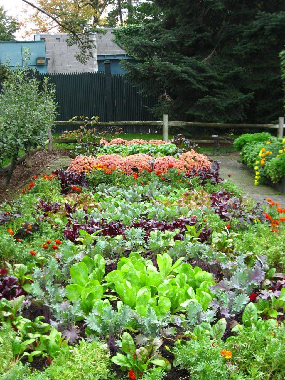 Best Pretty Vegetable Garden Ideas (3) - MOOLTON in 2020 ...