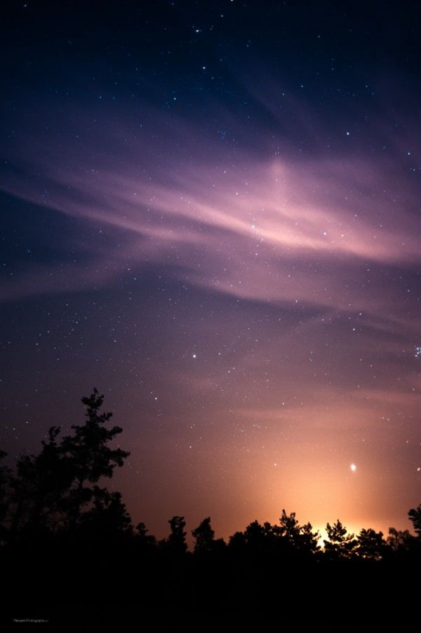 Night Forest Landscapes By Mensent Night Sky Art Night Forest Landscape Photography