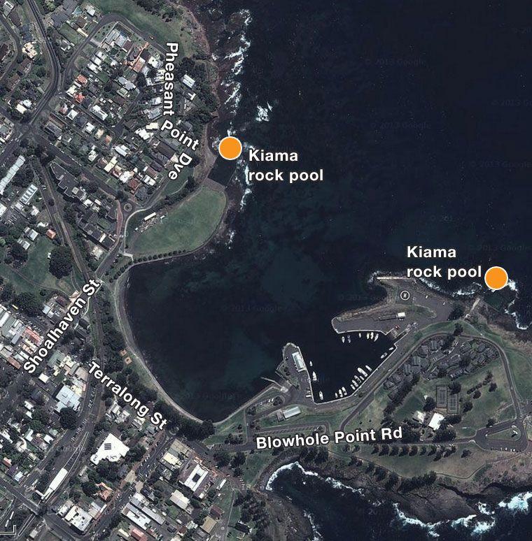 Where the Kiama locals love to swim | Illawarra Mercury
