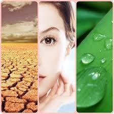 Hydrate skin.  Learn more about skincare at : coastaldermatology.com