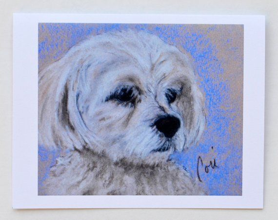 Maltese Dog Art Note Cards By Cori Solomon Dog Art Maltese Dogs