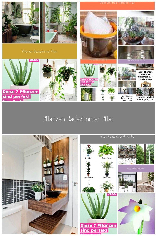 Pflanzen Badezimmer pflanze badezimmer dunkel, pflanze badezimmer ...