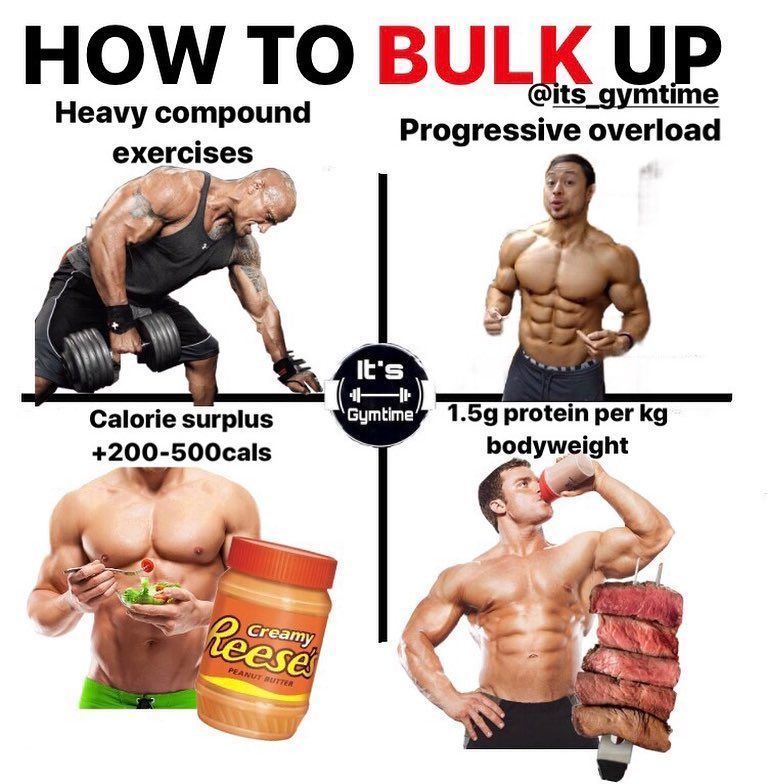 how to bulk and cut bodybuilding