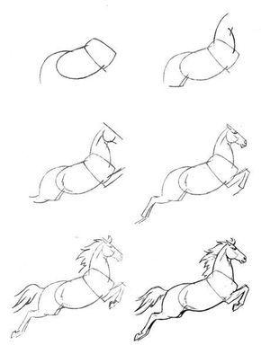 Ein Pferd Zeichnen Dekoking Com 1 How To Draw Stuff Pinterest