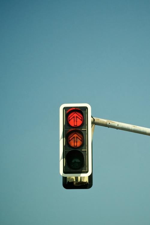 An Entry From A Rose Blooms Traffic Light Green Traffic Light Stop Light