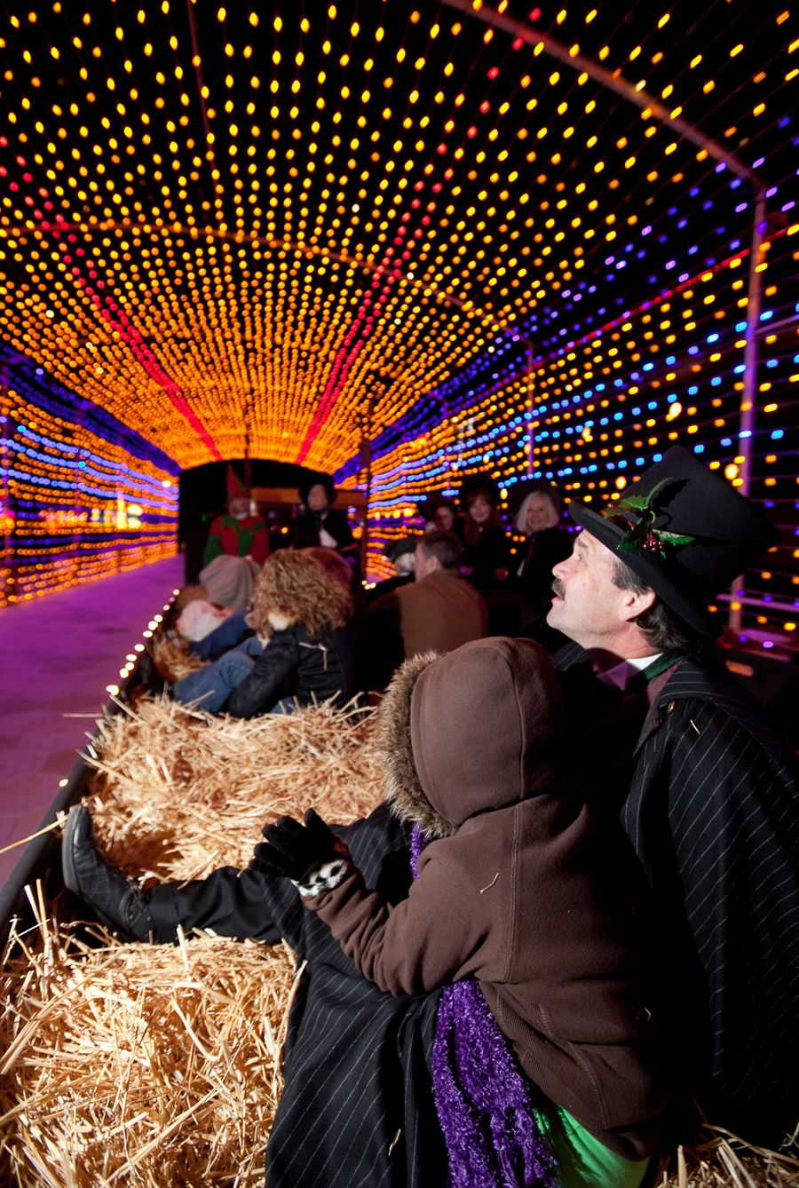 Holiday of Lights at the Del Mar Fairgrounds takes place ...