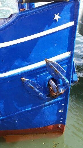 De Riepel zeehondentocht #Terschelling