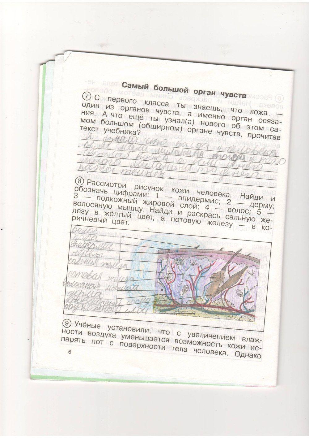 Http:fil1e-lo0ad.hq0q.asia r 13835 q решебник по математике за 4 класс аргинская ивановская кормишина