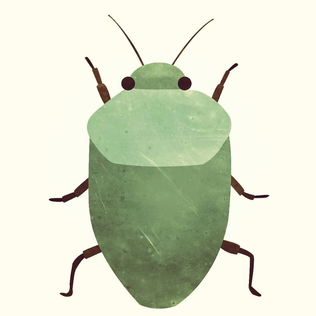 Das Ist Aus Meiner Skizze Geworden Ein Kleiner Gruner Kafer Alle Meine Skizzen Zeichne Ich In Photoshop Nach Anschliessend Bekommen Sie Animals Moth Insects