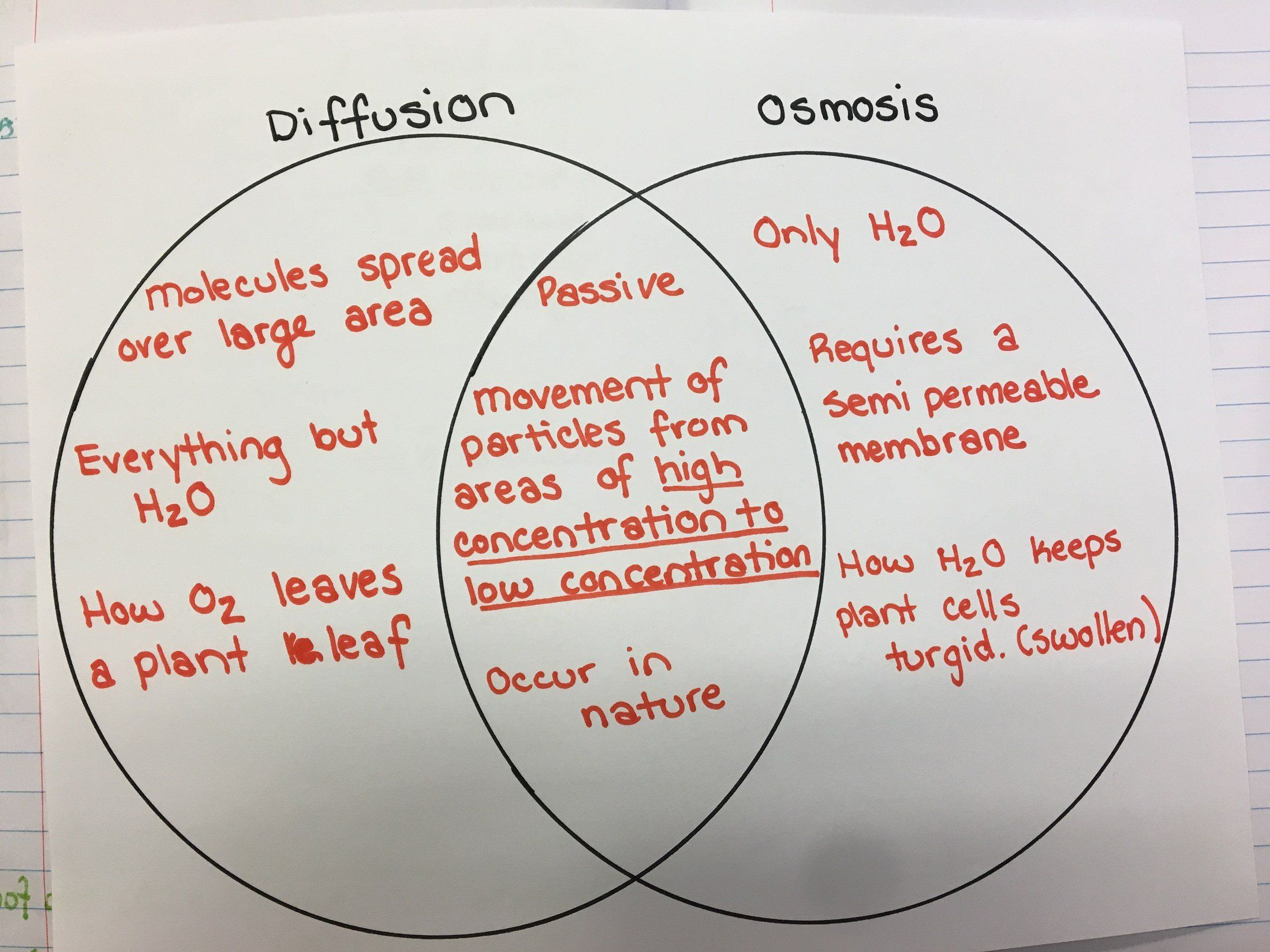 Osmosis Worksheet Answer Key Venn Diagram Of Osmosis And