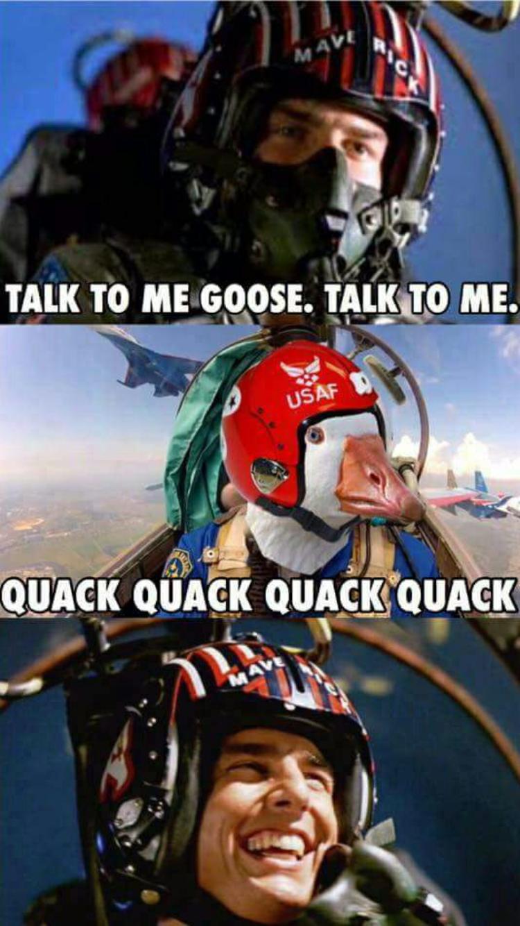 Pin On Top Gun Memes