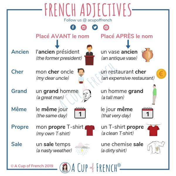 French adjectives   A Cup of French