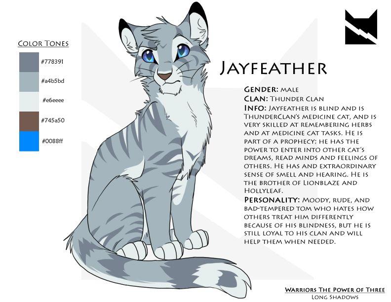 Jayfeather Character Sheet Warrior Cats Warrior Cats Books