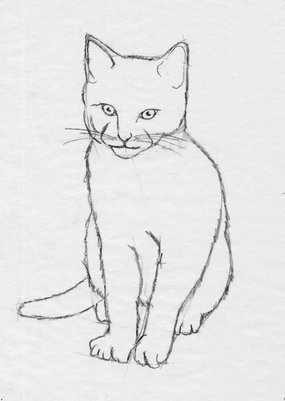 pin by jean lake on tattoos pinterest google images cat sketch