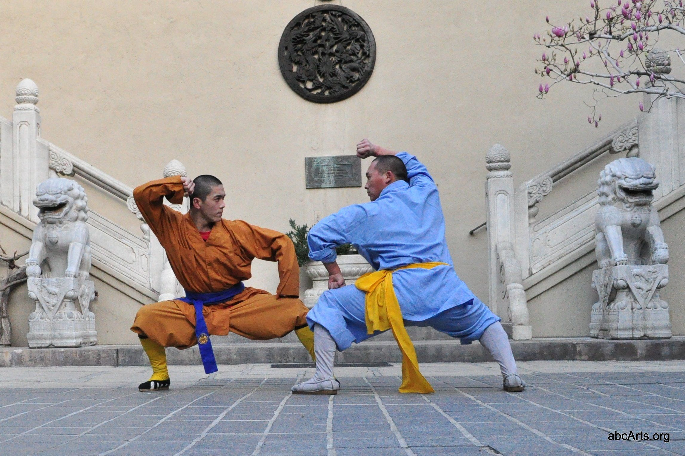 1000+ images about Shaolin Kung Fu on Pinterest | Kung fu, Eagle ...