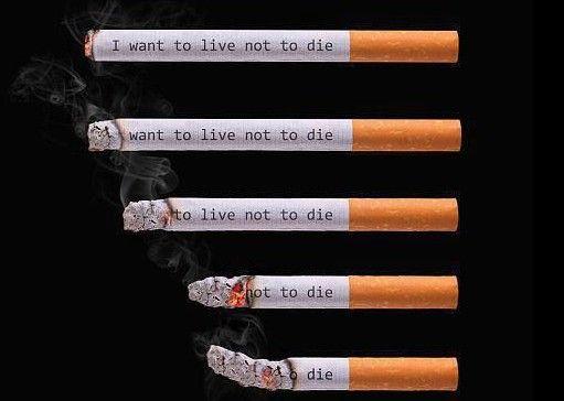 essays on the anti-smoking movement