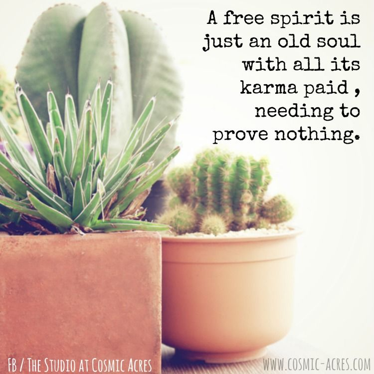 A free spirit is just an old soul with all its karma paid, needing to prove nothing. #FreeSpirit #CosmicQuotes #CosmicLife
